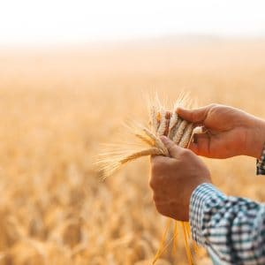 Earth Day Food for Thought: Farming for Conservation