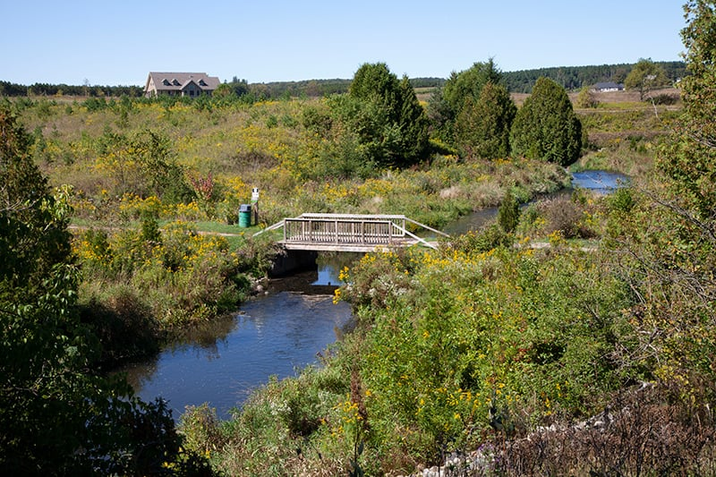 A river winding through a grassy area with a small bridge.