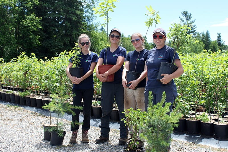 Four CVC employees in uniform pose holding potted plants in the nursery.