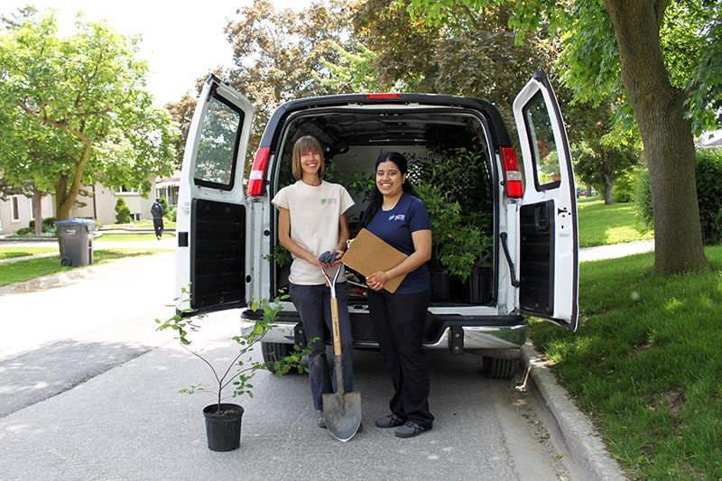 Two CVC staff members pose behind a work van with the doors open to show planting equipment and plants.