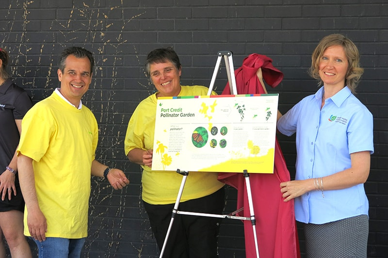 A Port Credit Pollinator Garden interpretive sign is revealed by a CVC staff member and two other people.