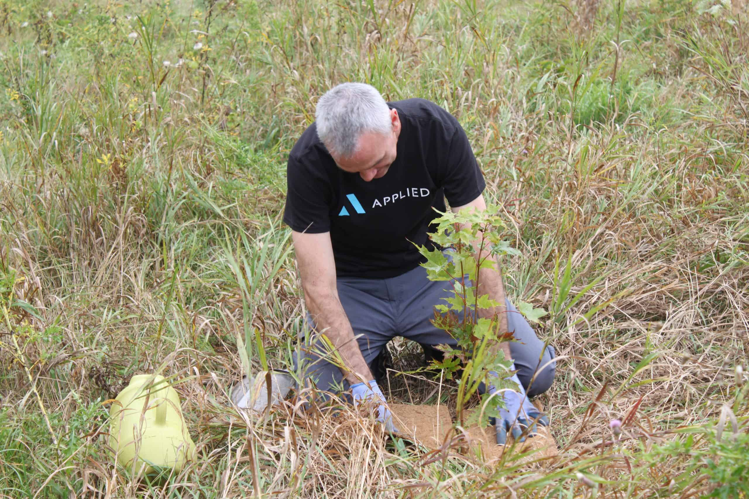 a person kneeling on the ground planting a tree