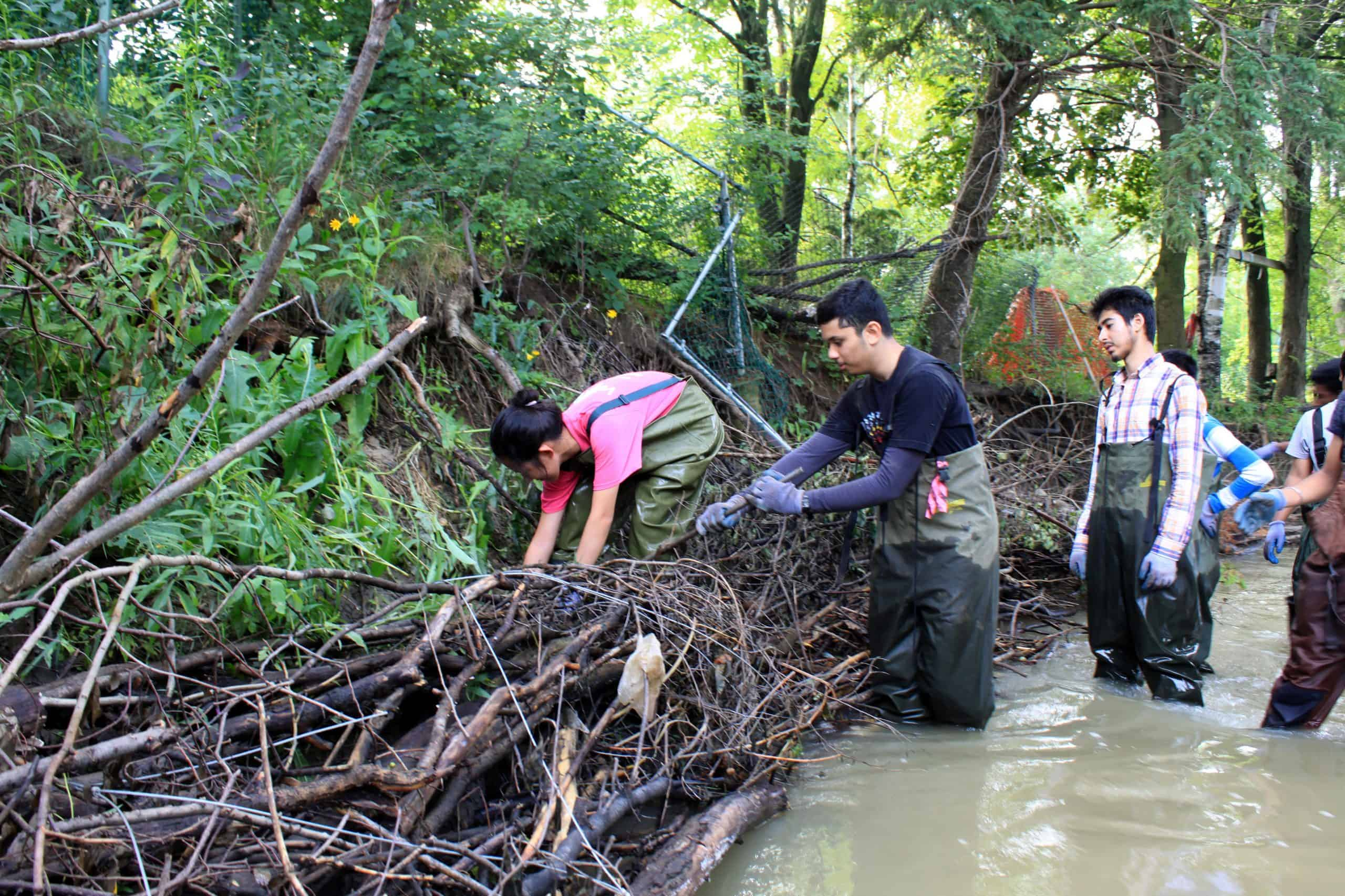 teens in hip waders standing in a stream working with natural material for a stream restoration project