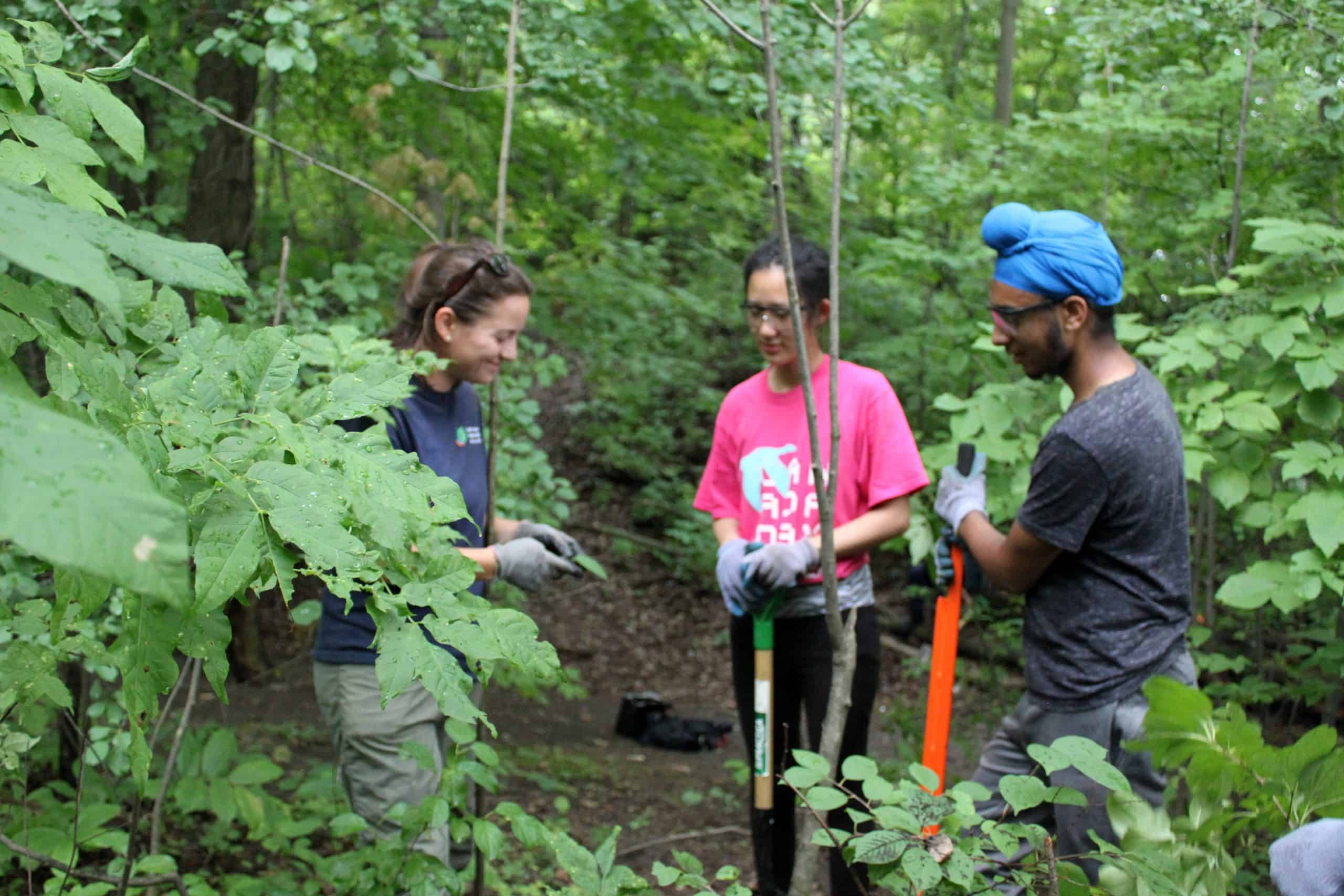 two teens with a CVC staff holding hand tools and working in a wood area as they do trail maintenance