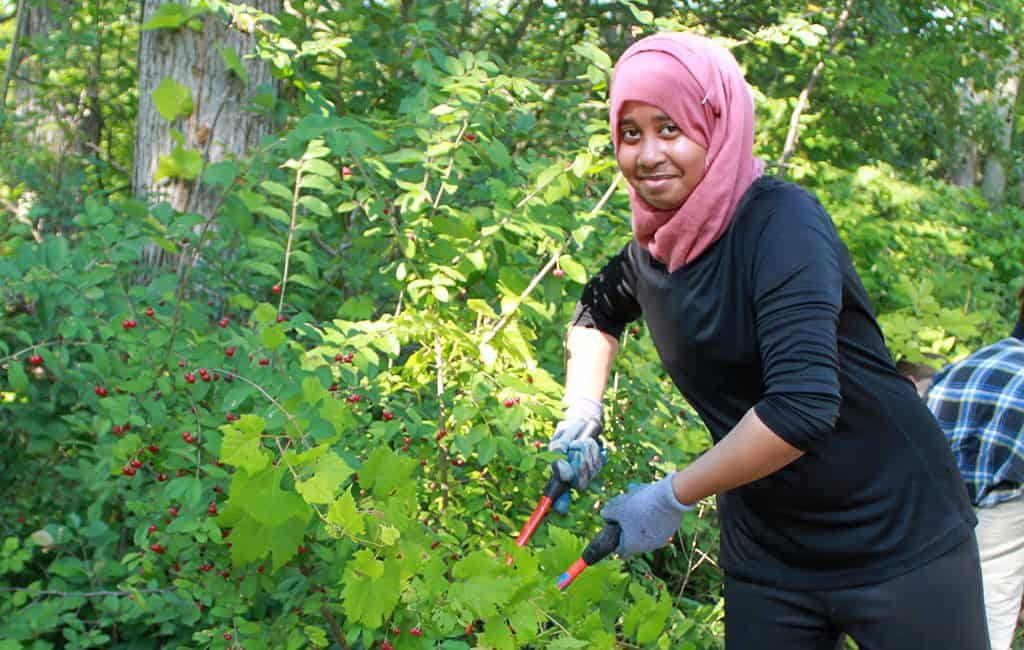 Volunteer using pruners to trim a plant.