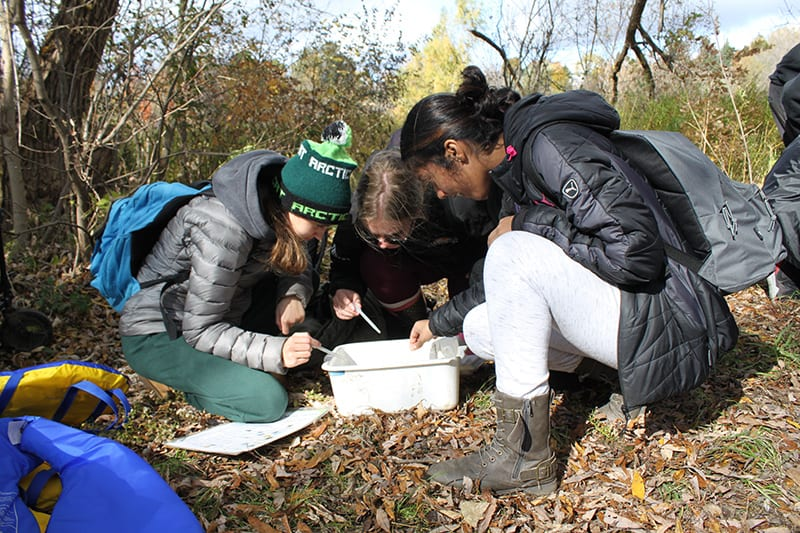 Three students examine samples from the river