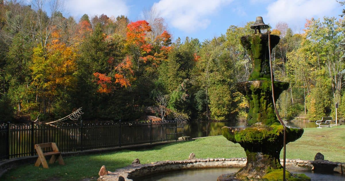 Fall colours in a forest behind a pond and an old fountain.