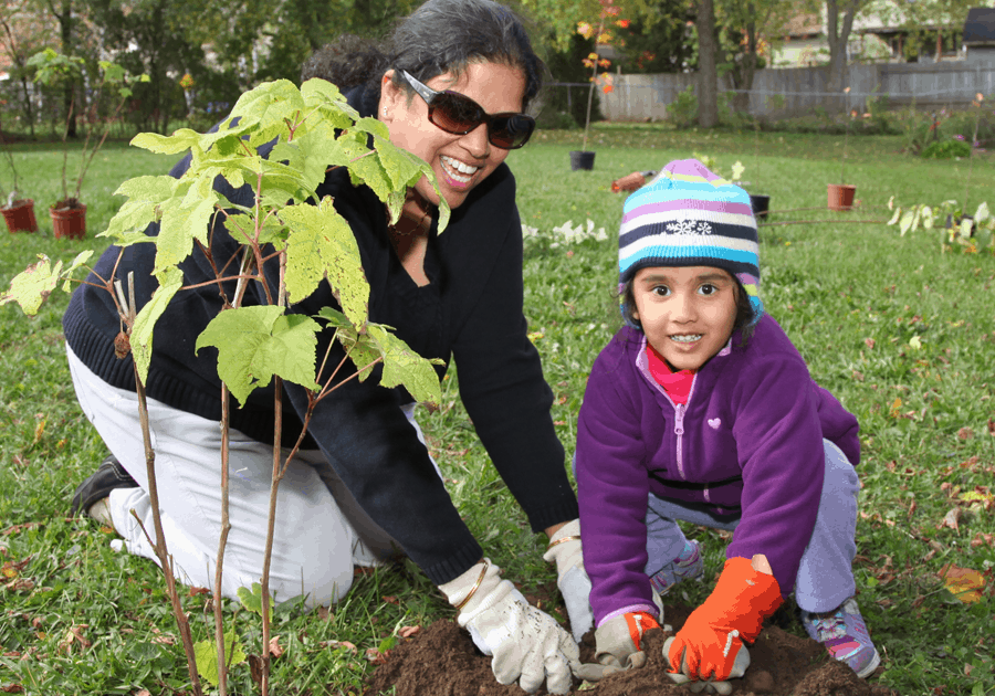 Adult and child planting tree