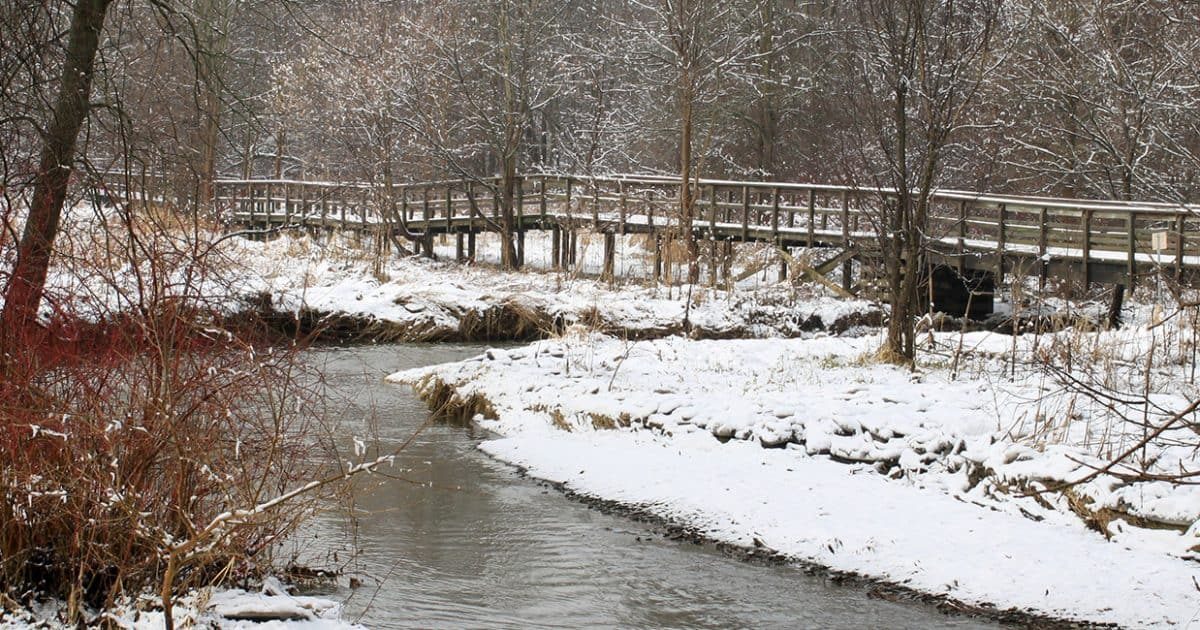 A snowy boardwalk bridge crossing over water with trees beyond in the winter at Rattray Marsh Conservation Area.