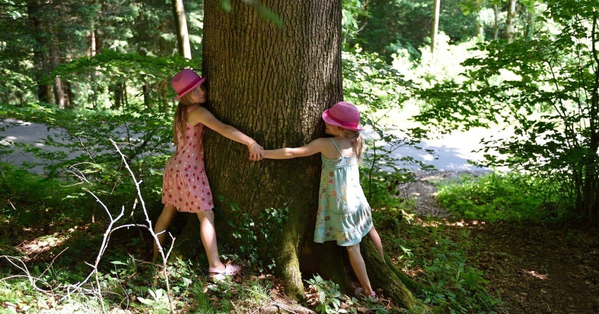 Two children hugging a tree