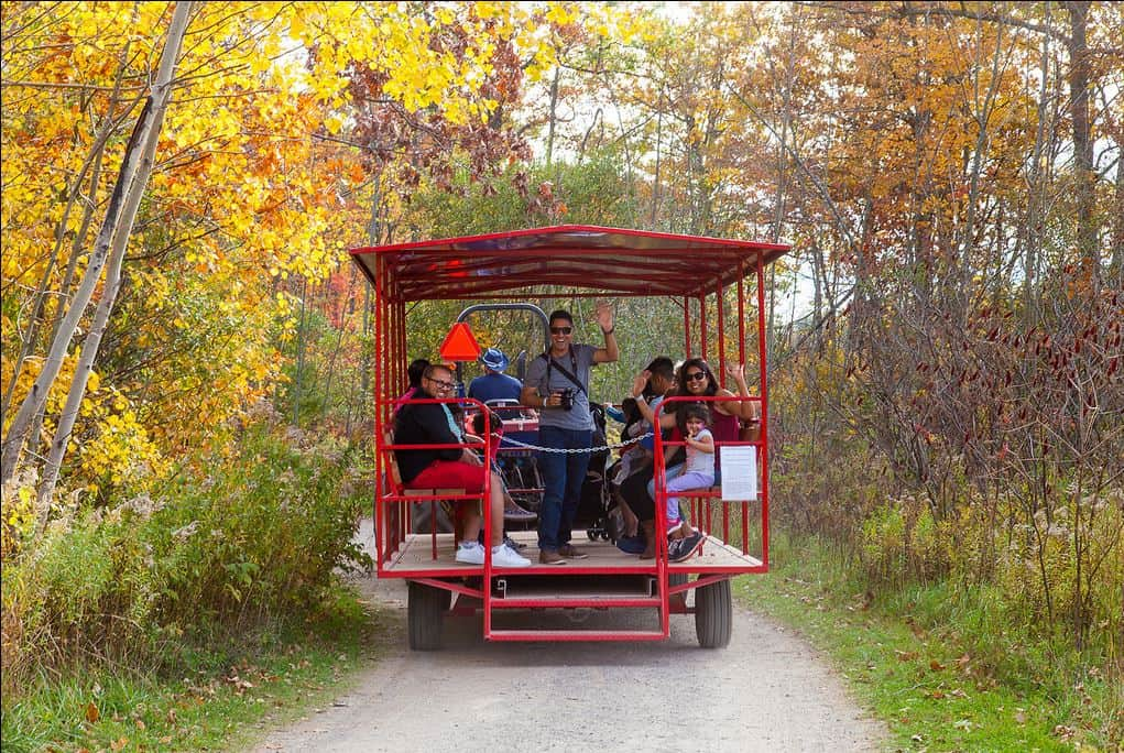 people on a wagon ride on a path in the forest with fall colours